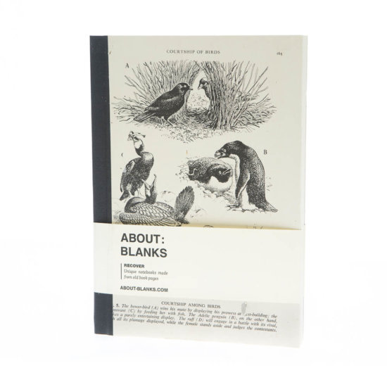 Bower bird notebook