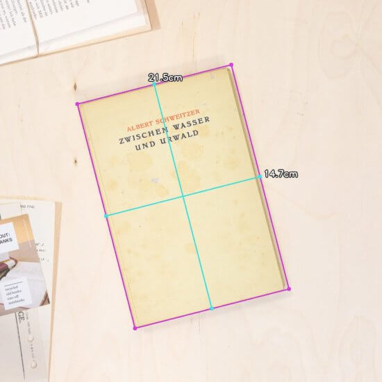 Jungle notebook dimensions