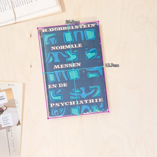 normal people dimensions book