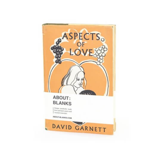 Love aspects notebook